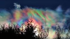 Mid- Morning Iridescence (astronomy clouds heat+wave winter sky trees ). Photo by trailhiker44