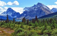 Bow Lake along Icefields Parkway in Banff National Park, Alberta