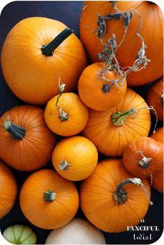 pumpkins . . . yay for fall!