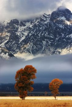 Grand Teton National Park - one of the many places I've been to that I want to go back to - with my family :)