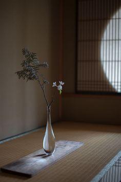 瀬沼健太郎 Works 2015spring   panorama
