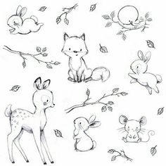 Easy drawings of cute animals cute easy animals to draw best cute baby animal sketches cute . easy drawings of cute animals Cute Sketches, Drawing Sketches, Drawing Ideas, Bunny Sketches, Drawing Poses, Drawing Lessons, Pencil Drawings, Woodland Creatures, Woodland Animals