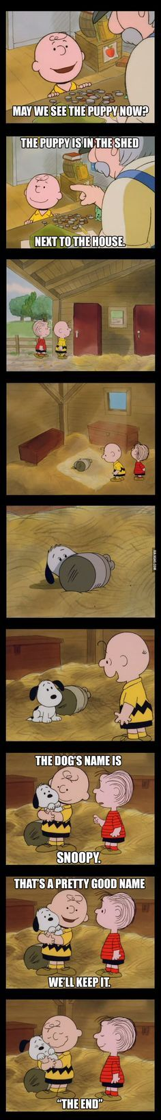 Epic moment of childhood. Must read for Snoopy fans!