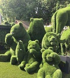 Wonderful Types Of Urban Gardening Ideas. Sensational Types Of Urban Gardening Ideas. Amazing Gardens, Beautiful Gardens, Landscape Design, Garden Design, Green Landscape, Topiary Garden, Topiaries, Outdoor Topiary, Boxwood Garden