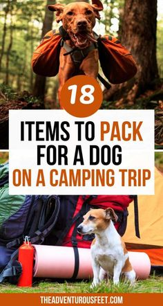 Must Have Camping Gear, Best Camping Gear, Camping Life, Road Trip Packing, Packing List For Travel, Packing Lists, Camping Checklist, Camping Essentials, Dog Travel