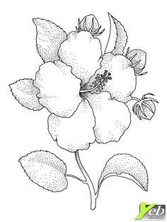 comment dessiner une jolie fleur