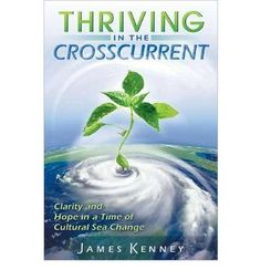 [ THRIVING IN THE CROSSCURRENT: CLARITY AND HOPE IN A TIME OF CULTURAL SEA CHANGE ] By Kenney, Jim ( Author) 2010 [ Paperback ] null http://www.amazon.com/dp/B009QSGJY8/ref=cm_sw_r_pi_dp_gJTkub1S2T818