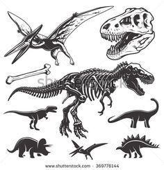 stock-vector-set-of-monochrome-dinosaurs-archeology-elements-t-rex-skull-and-skeleton-dinosaurs-icons-369776144.jpg (450×470)