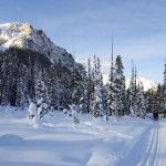 Lake Louise Cross Country Skiing: Fairview & Tramline Trails