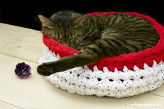 DIY Pets: Crocheted Cat Bed  Mom - maybe you could adjust the pattern and crochet a bed for Duke...