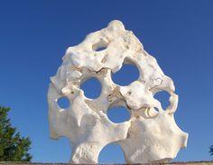 Texas Holey Rock