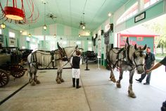 Equitrekking's list of the best horse museums in America