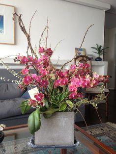 Orchid arrangement with spirea
