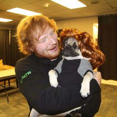 Doug The Pug met Ed Sheeran and, hey, he's met a lot of celebs and taken silly photos with them, hasn't he? Dog Breeds That Dont Shed, Ed Sheeran Love, I Want You Love, Doug The Pug, Got Memes, Idol, I Love One Direction, Pug Life, Extended Play
