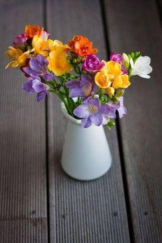 fragrant and colorful freesia Arrangements Ikebana, Floral Arrangements, Flowers Nature, Beautiful Flowers, Freesia Flowers, Freesia Bouquet, Pot Plante, Beautiful Flower Arrangements, Arte Floral