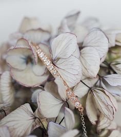 CaiSanni | Kultasepänverstas (@caisanni) • Instagram-kuvat ja -videot Bespoke, Instagram, Jewelry, Taylormade, Jewlery, Bijoux, Schmuck, Jewerly, Jewels