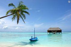 1v Miami & 1v ALL INCLUSIVE Karibienkryssning | Utland: USA