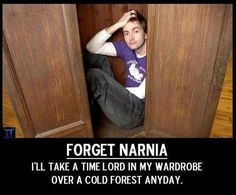 A Time Lord in Narnia would be even better :)
