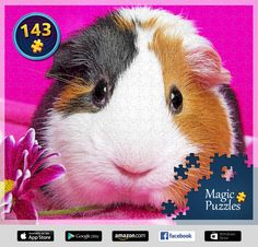 I've just solved this puzzle in the Magic Jigsaw Puzzles app for iPad. Image Storage, Ipad, Puzzle Board, Some People, Jigsaw Puzzles, Rabbit, Magic, Animals, Pictures