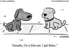 Botox humor