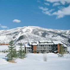 Bring the whole family to our Caribbean family beach resorts. Vacation Resorts, Beach Resorts, Steamboat Springs Colorado, Room Reservation, Dog Friendly Hotels, Moving To Colorado, Steamboats, Colorado Mountains, Hotel Deals