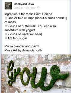Moss paint from backyard diva via fb