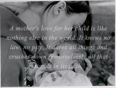 A Mothers love... Nothing Compairs