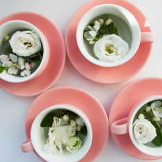 #cup#flower#white#coral#morning