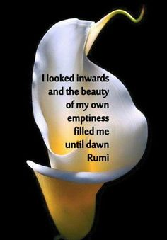 I look inwards and the beauty of my own emptiness filled me until dawn. Rumi