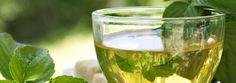 Expertos aconsejan tomar té verde y fibra contra el síndrome metabólico. www.farmaciafrancesa.com