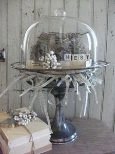 Real Birds Nest Vignette Under A Glass Cloche by TheVintageHeiress Shabby, Glass Domes, Glass Jars, Cloche Decor, The Bell Jar, Bell Jars, Vintage Display, Bird Cages, Apothecary Jars