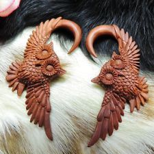 "Night Owls, Real Gauges, 6mm Wood Tribal Earrings, 2.5"" Tall, Expertly Carved"