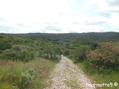 Les Garrigues au nord de Nîmes, Gorges du Gardon. Garrigues, Country Roads