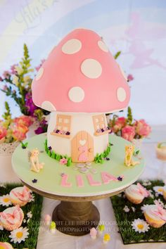 Toadstool and artificial grass