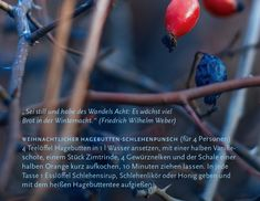 Weihnachtlicher Hagebutten-Schlehenpunsch: Rezept von @Karin Mecozzi aus unserem #Sternkalender #Ostern 2017/2018. Mehr unter: www.vamg.ch #Sternkalender #KarinMecozzi #Rezept #Punsch #Hagebutten #Schlehen #VerlagamGoetheanum #Goetheanum #Kalender #Weihnachten #weihnachtlich #WolfgangHeld Rind, Orange, Fruit, Winter Night, Punch, Calendar, Christmas, Recipes