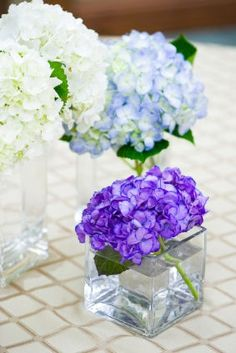 Cheap Centerpieces: they sell the vases at dollar tree, and you could do different flowers easily...
