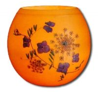 #Honeypot Luminaries / / Hydrangea & Queen Annes Lace