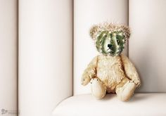 Buttefly Kids suffer on a disease called Epidermolysis Bullosa (short: EB). Teddy. PROJECT BY:  Staudinger + Franke