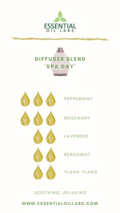 'Spa Day' Diffuser Blend by Essential Oil Labs using peppermint essential oil, rosemary essential oil, lavender essential oil, bergamot essential oil and ylang ylang essential oil. Essential Oils Guide, Essential Oil Set, Bergamot Essential Oil, Essential Oil Diffuser Blends, Reed Diffuser Oil, Doterra Diffuser, Easential Oils, Young Living, Diffuser Recipes