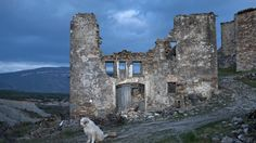 A sheepdog sits among the ruins of the village of Esco near the Yesa reservoir in Aragon region. Agricultural Land, Abandoned Places, Mount Rushmore, Around The Worlds, Mountains, Aragon, Pictures, Travel, Creepy Stuff