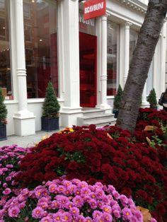 Our showroom | SoHo, New York | #Springtime