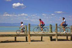 Ciclistes sobre les passarel-les del Parc Natural del Delta de l'Ebre (Lluís Carro)
