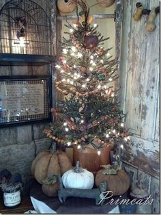 Prim Tree & Pumpkins...for Thanksgiving gatherings. Wrap some boxes in burlap and muslin, add red bows/ribbons and make this a Primitive Christmas corner.
