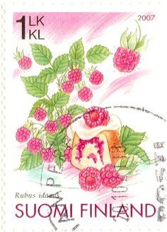 Suomi Finland 2007 stamp of Rubus idaeus (Red Raspberries)