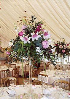 Google Image Result for http://0.tqn.com/w/experts/Floral-Arrangements-2142/2009/06/wedding-reception-centerpiece.jpg