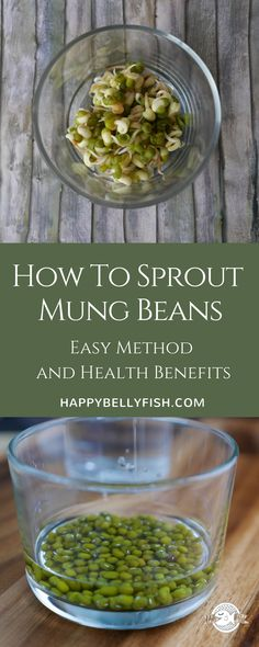 How to sprout Mung Beans and Enjoy Its Health Benefits - step-by-step guide and nutritional information #healthyfood #healthyeating #beans #sprouts #sprouting #nutrition #mung #mungbeans #plantbased #vegan #veganfood #glutenfree #cooking #cookingtips #healthyliving