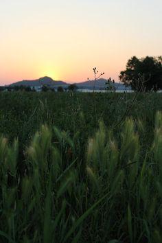 Italian sunset!