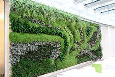 Biotecture Ltd Wall
