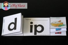 FREE IP Word Family Flip Book