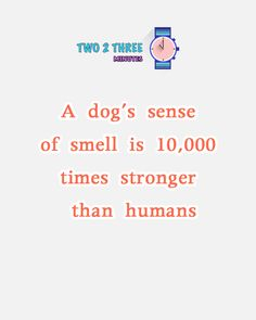 Dogs Facts